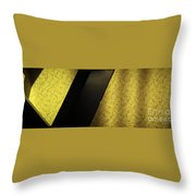 Framed Fancy Throw Pillow