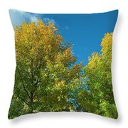 Fraxinus Excelsior  Throw Pillow