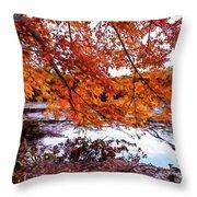 French Creek 15-107 Throw Pillow