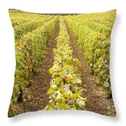French Vineyards Of The Champagne Region Throw Pillow