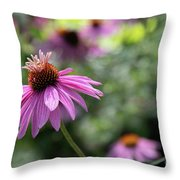 Frilly Hat Echinacea Throw Pillow
