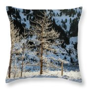 Frost Covered Trees On The Portage Glacier Highway Alaska Throw Pillow