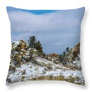 Frosting On The Backbone Throw Pillow