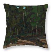 Gargantua Harbour Brook Throw Pillow