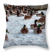 Gathering #i3 Throw Pillow by Leif Sohlman