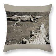 Gator  Park Residence Throw Pillow