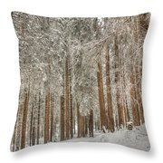 Gerschnialp Throw Pillow