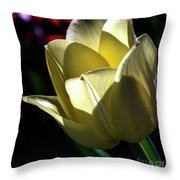Glowfilled Throw Pillow