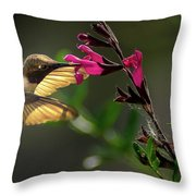 Glowing Wings Of A Hummingbird Throw Pillow
