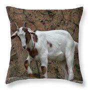 Goat Print 9245 Throw Pillow