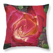 God's Grace Throw Pillow