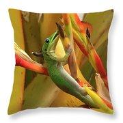 Gold Dust Gecko  Throw Pillow