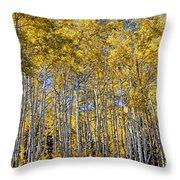 Golden Aspen Grove Throw Pillow