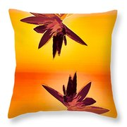 Golden Duo Water Lilies Throw Pillow