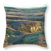 Golden Grasslands Enchantment Throw Pillow