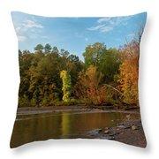 Golden Hour At Esopus Meadows II Throw Pillow