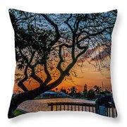 Golden Hour Throw Pillow by Louis Dallara