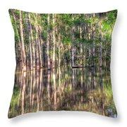Golden Hour Serenity Throw Pillow