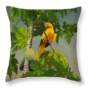 Golden Parakeet In Papaya Tree Throw Pillow