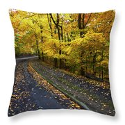 Golden Road Throw Pillow