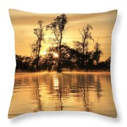 Golden Start Throw Pillow