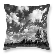 Good Harbor Shoreline Black And White Throw Pillow
