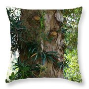 Good Things Come In Trees Throw Pillow