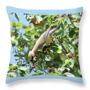 Gotta Have It Throw Pillow by Sally Sperry