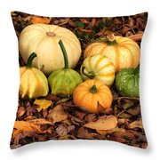 Gourds Grounded Throw Pillow