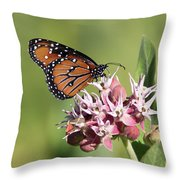 Grafton Queen Throw Pillow