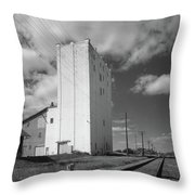 Grain Elevator, 2001 Throw Pillow