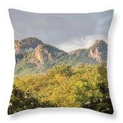 Grandfather Mountain Throw Pillow by Ken Barrett