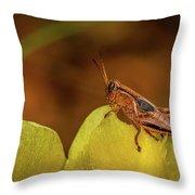 Grasshopper 4600 Throw Pillow