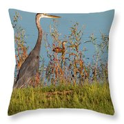 Great Blue Heron Looking For Food Throw Pillow