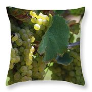 Green Grapes On The Vine 10 Throw Pillow