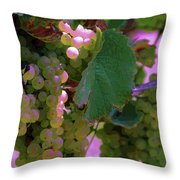 Green Grapes On The Vine 12 Throw Pillow