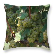 Green Grapes On The Vine 18 Throw Pillow