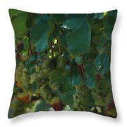 Green Grapes On The Vine 4 Throw Pillow