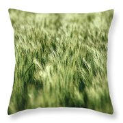 Green Growing Wheat Throw Pillow
