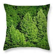 Green On Green Throw Pillow by Jeff Phillippi
