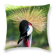 Grey Crowned Crane Gulf Shores Al Collage 2 Triptych Throw Pillow
