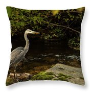 Grey Heron Fishing Throw Pillow