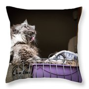 Grey Long Haired Cat Sitting On A Window Sill Throw Pillow