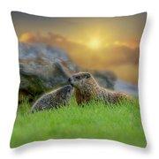 Groundhog Morning Throw Pillow by Bob Orsillo