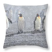 Group Of King Penguins In The Snow Throw Pillow by Alan M Hunt