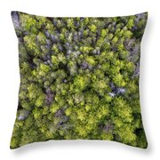 Grove Of Pines Aerial Throw Pillow