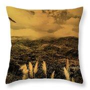 Gualaceo, Ecuador Panorama  Throw Pillow