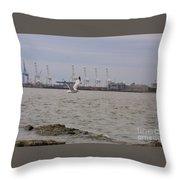 Gull In Flight On New Jersey Bay Throw Pillow