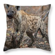 H2 Throw Pillow by Joshua Able's Wildlife