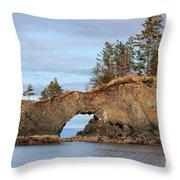 Halibut Cove Rock Formation Kenai Peninsula Alaska Throw Pillow